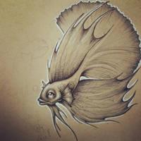 Betta Fish by JordanMendenhall