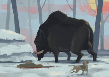 The Boar by Limely