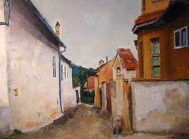 Street in Sighisoara by prettywell