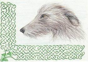 Irish Wolfhound ACEO by arikla