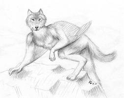 Sketch - Arikla version 2.0 by arikla