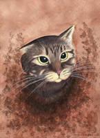 Portrait of a Cat by arikla