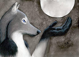 Lupa Holds the Moon by arikla