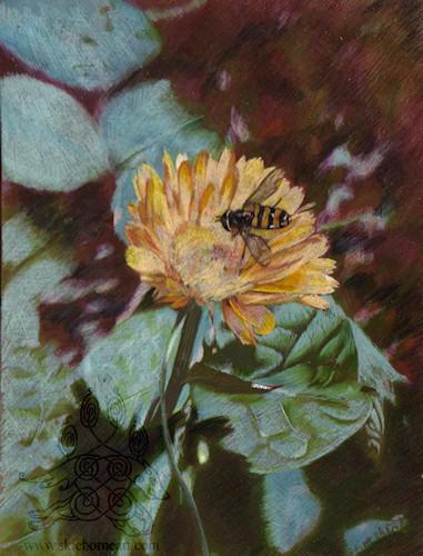 Pollinator by arikla