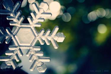 christmas morning by thresca