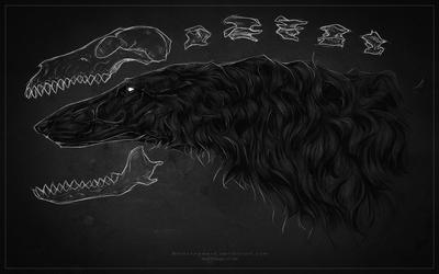 Blackbone by Blacknemera