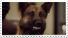 Angie Tribeca: Hoffman Stamp by Tigerstar52