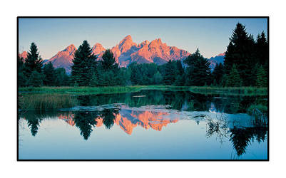 Schwabacher's in Pink by njh79