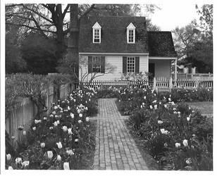 Colonial Williamsburg - 8x10 print by rdungan1918