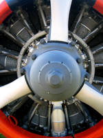 Radial Aircraft Engine by centristok