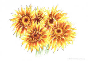 Sunflower Bouquet, Copic drawing by NoirArt