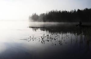 Misty morning in august by Perifeerikko
