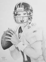 Eli Manning 2 by troydodd