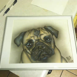 Airbrushed pug by marcotheartist