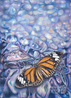 Amethyst Butterfly by Carol-Moore