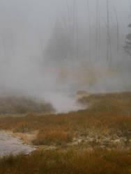 Yellowstone stock -13 by Carol-Moore