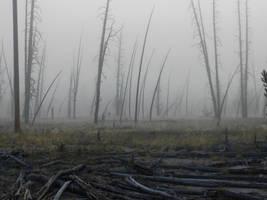 Yellowstone stock -14 by Carol-Moore