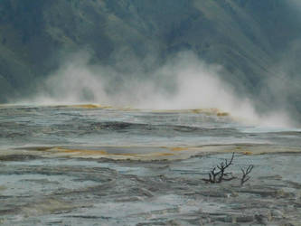 Yellowstone stock -17 by Carol-Moore