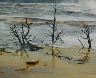 Yellowstone stock -18 by Carol-Moore