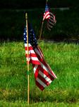 American Flag Stock 1 by Carol-Moore