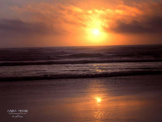 Newport Oregon by Carol-Moore