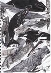 Cetacean Nation by Wetherdog