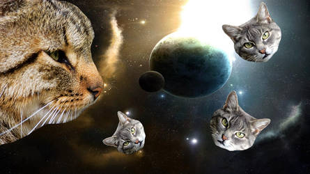 Cats! (In Space!) by Dilbert92