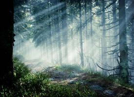 Magic Forest III - Dark Place by thoosah