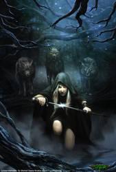 Dark Riding Hood - Shadow era by ortheza