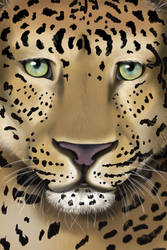 Updated leopard by kitsune89