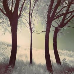 dream a green by incisler
