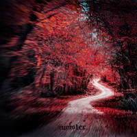 crazy red by incisler