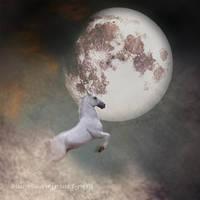 Fly To The Moon by sawjpsart-proj