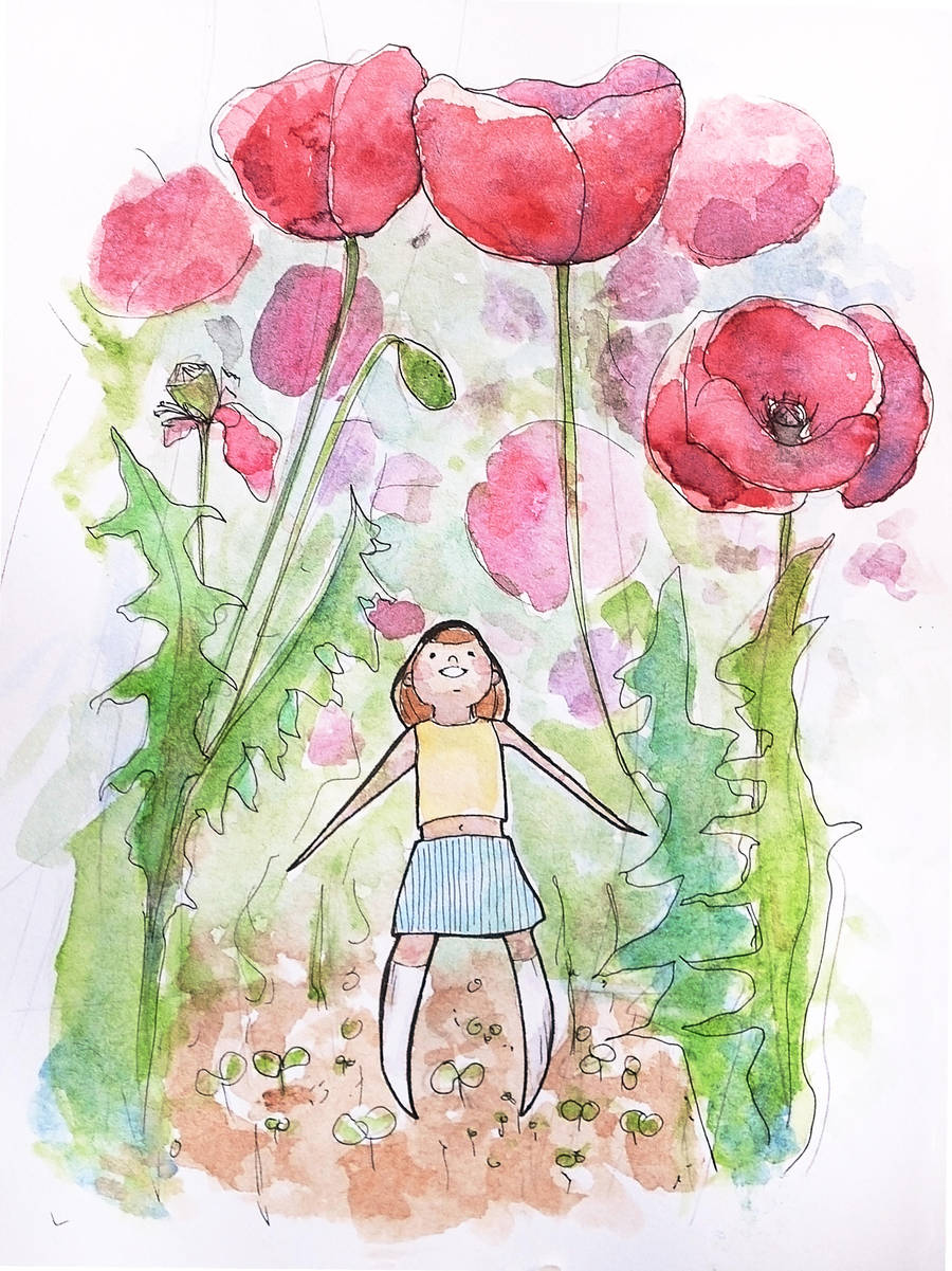 Poppy garden by Evychan
