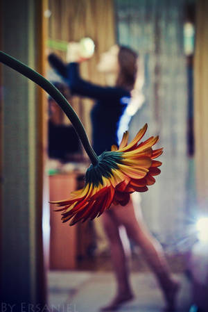 Dancing with a flower by Ersaniel