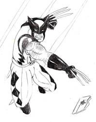 Wolverine by mortichro