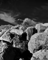 Beach-1 by AugustStudios