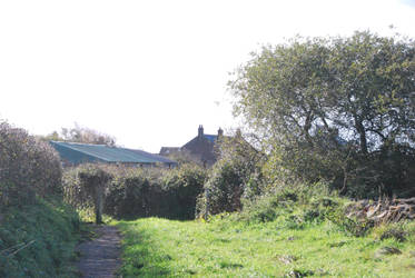 Field pathway  by carlosthebadman