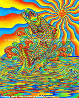 Psychedelic Rainbow Trout by rebeccawangart