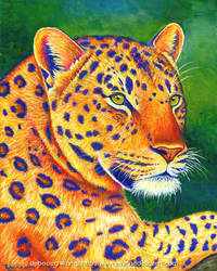 Colorful Leopard Portrait by rebeccawangart