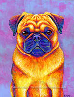 Colorful Rainbow Pug Dog Portrait by rebeccawangart