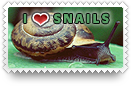 I Heart Snails Stamp by barefootphotos