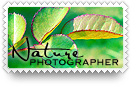 Nature Photographer Stamp by barefootphotos