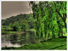 Passing the Weeping Willow by barefootphotos