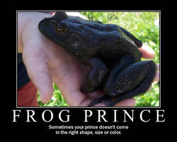 Frog Prince by barefootphotos