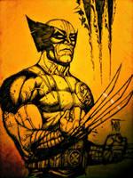 Wolverine by DanielDahl