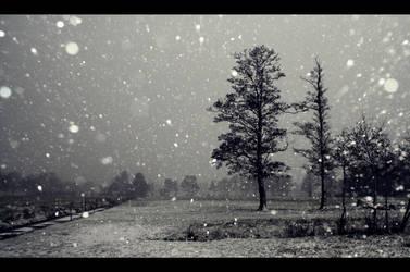 Sneeuwvlokken by voorikvergeet