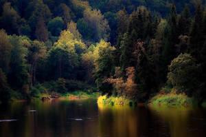 nature by Henxxx