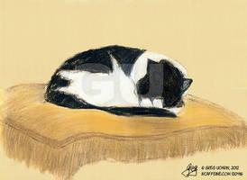 Doozey Asleep On Pillow by GregoriusU