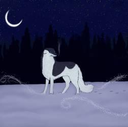 Wandering in the winter night by saffulizardi